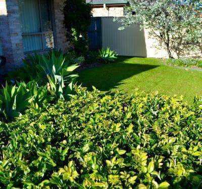 Coastal Maintenance Contractors | Gardening