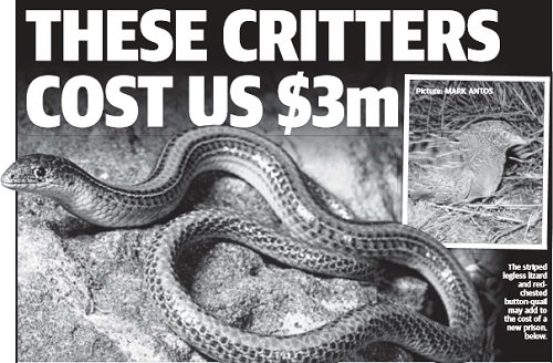 These critters cost us $3m - SUNDAY HERALD SUN
