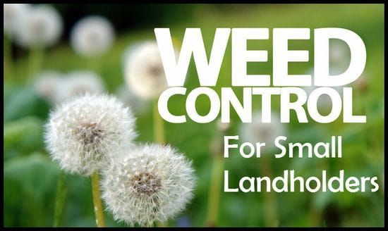 Weed Control for Small Landholders