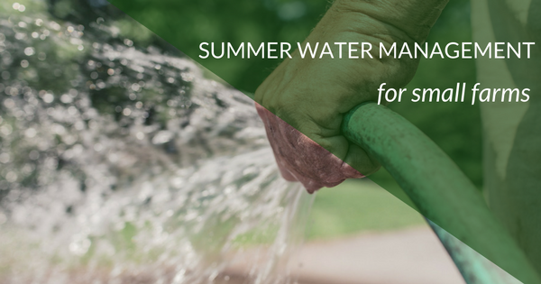 Summer Water Management