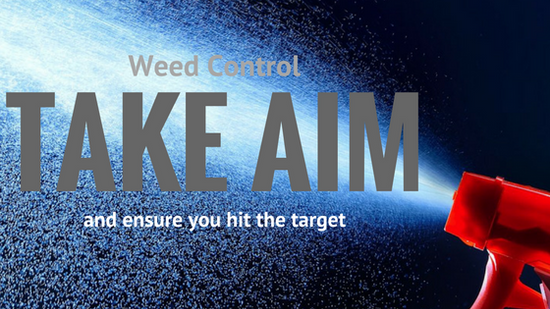 Weed Control | take aim and ensure you hit the target