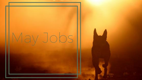 May Jobs