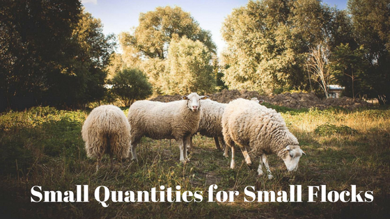 Small Quantities for Small Flocks