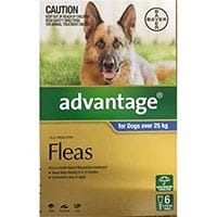 Bayer Advocate Flea & Worm Treatment  Dogs Lg over 25kg