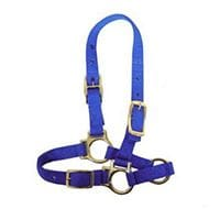 Bainbridge Halter for Sheep And Goats