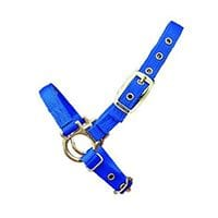 Bainbridge Hamilton Sheep Halter
