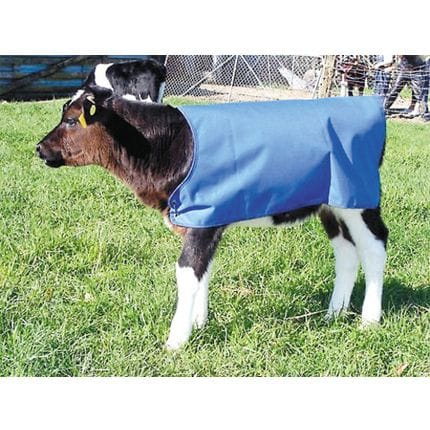 Bainbridge Calf Cover