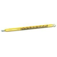 Bainbridge Veterinary Thermometer