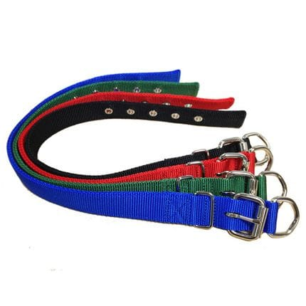 Bainbridge Dog Collars Webbing - Drover