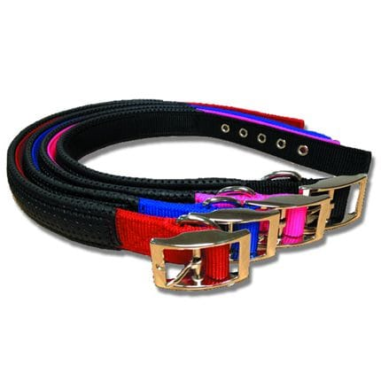 Bainbridge Dog Collar Webbing - Padded