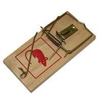 Bainbridge Mouse & Rat Trap