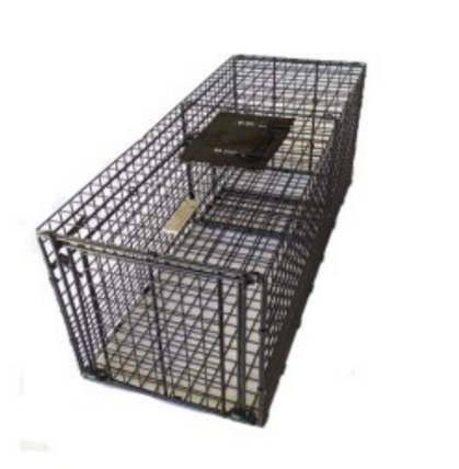 Bainbridge Cage Trap - Large