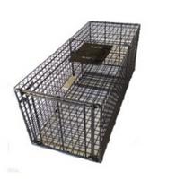 Bainbridge Cage Trap - Large