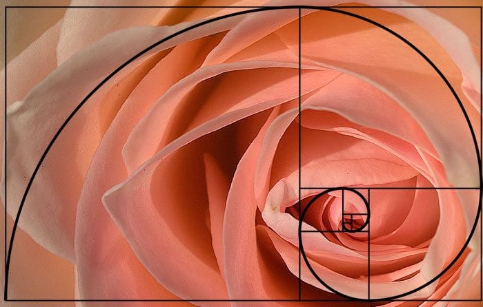 Did you know...The Golden Ratio?