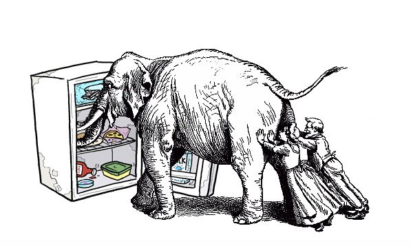 How do you put an elephant in your fridge?
