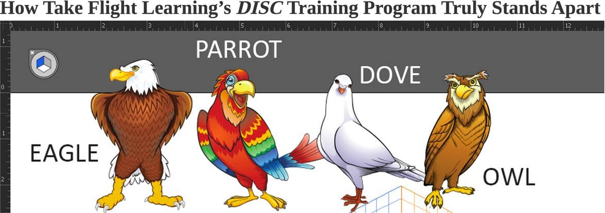 Take Flight with DISC at Talent Tools