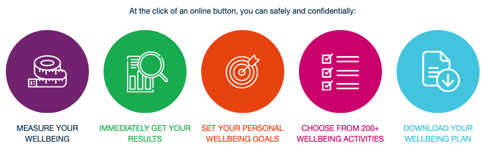 Talent Wellbeing PERMAH Survey at Talent Tools