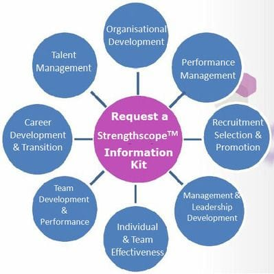 Strengthscope profiles and reports at Talent Tools. Work based strengths identifier