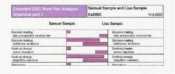 Extended DISC Work Pair Analysis at http://talenttools.com.au/extended-disc-reports.html