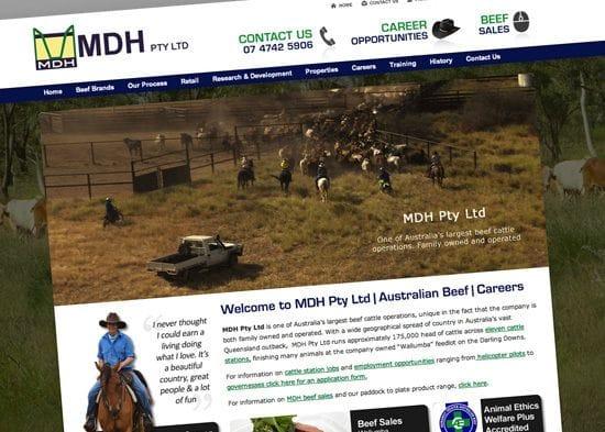 Client Spotlight - MDH Beef