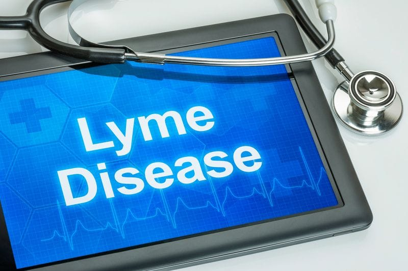 What you need to know about Lyme disease