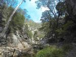 Waterfall Creek, Mt Barney NP - Beaudesert Region