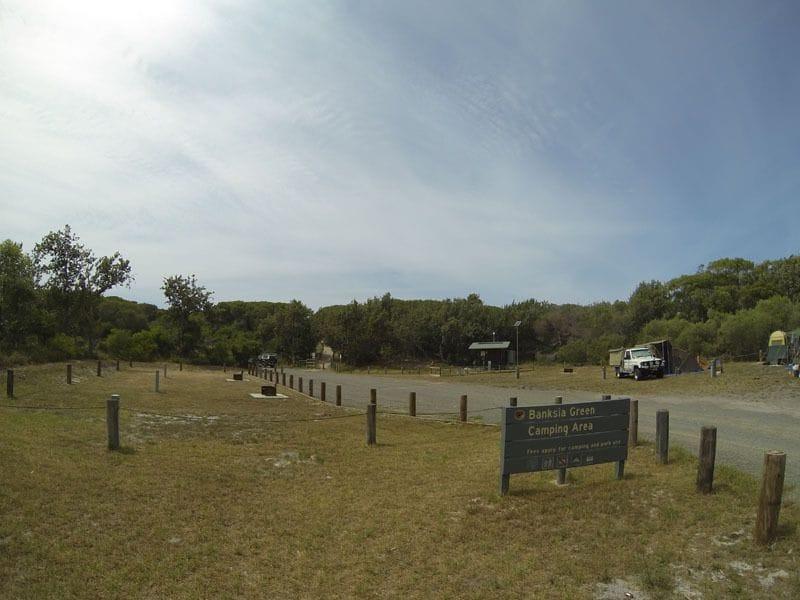 Banksia Green, Myall Lake Nat Park, North of Hawks Nest