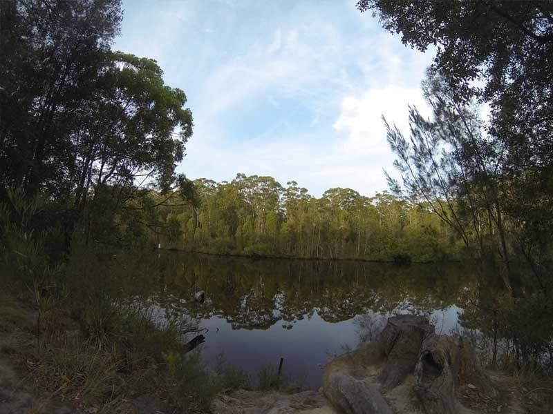 Wallingat, Wallingat Nat Park, Forster Region