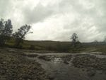 Bretti Reserve, Gloucester Region