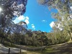 Blackheath Glen, Megalong Valley, Blue Mountains