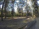 Murphys Glen, Blue Mountains National Park