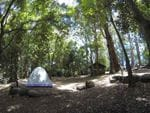 Binna Burra, Lamington National Park - Gold Coast Hinterland