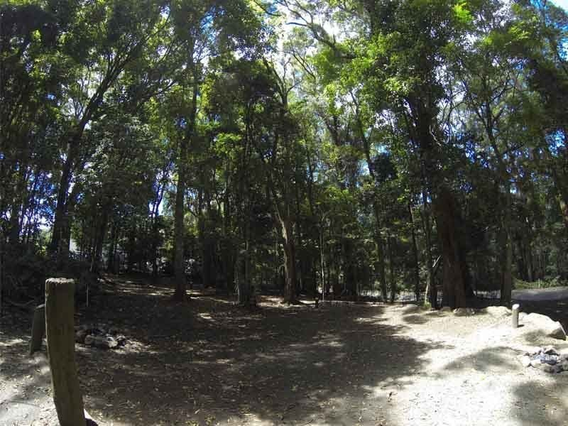 ... Thumbnail 1 ... & Binna Burra Lamington National Park