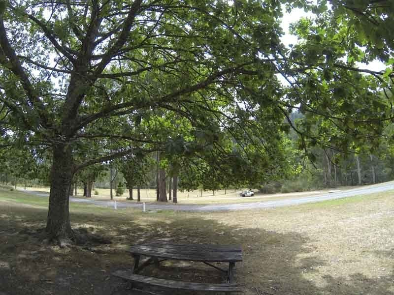 Upper Yarra Reservior Park - East of Warburton