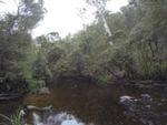 McClelland Camp Area, Big River State Forest