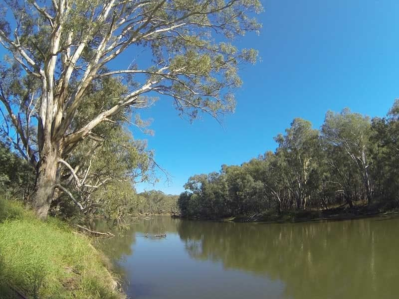 Shaws Flat, Murray River, North of Rutherglen