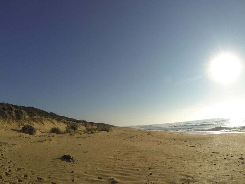 Shoreline Drive, Goldern Beach, Gippsland Lakes Coastal Park