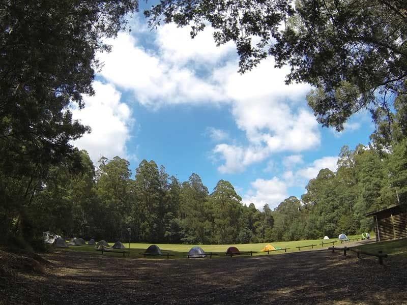 Toolangi Recreation Reserve, Toolangi