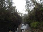 Big Bend, Big River State Forest