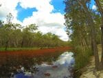 Wongi Waterholes Camping Area, Duckinwilla