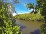 Baratta Creek, Bowling Green Bay Nat Park, South of Townsville