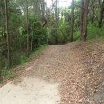 Winney Bay Cliff Walk