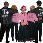 T-Birds and Pink Ladies