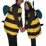 Insects - Bees