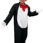 Cat in the Hat  -  $85