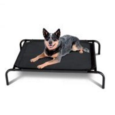 Dog Bed- Flea Free Mesh
