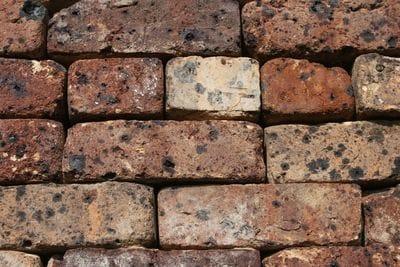 Hawthorn black bricks