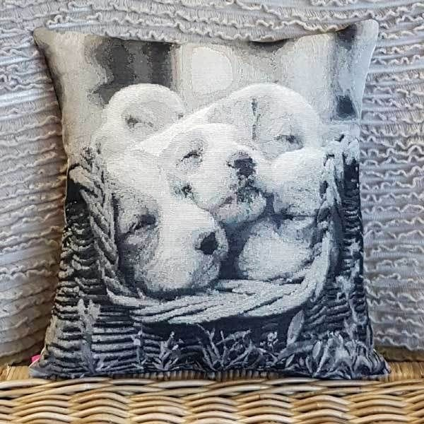 Cushion #0139