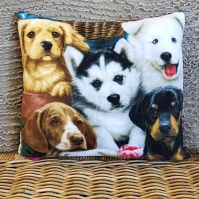 Cushion #0134