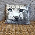 Cushion #0129